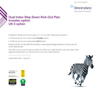 Dual Index Step Down Kick-Out Plan 13 (Financial Institution Option) brochure