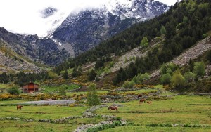 Vall d'Incles in northern Andorra
