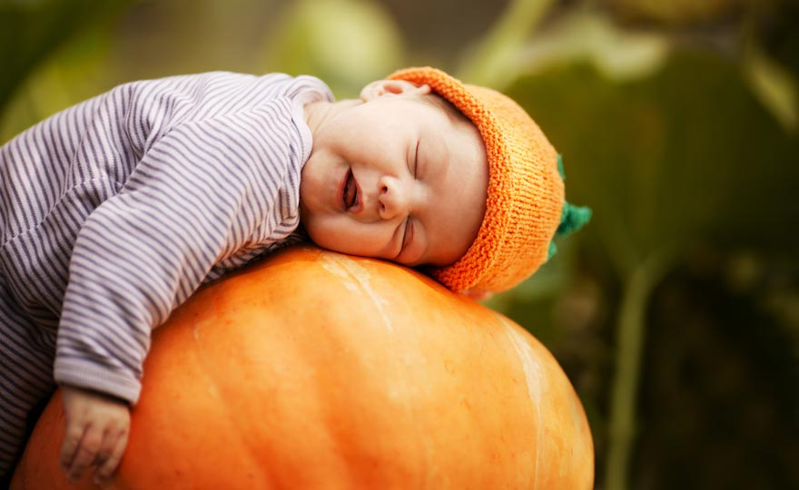 pumpkin life insurance larger